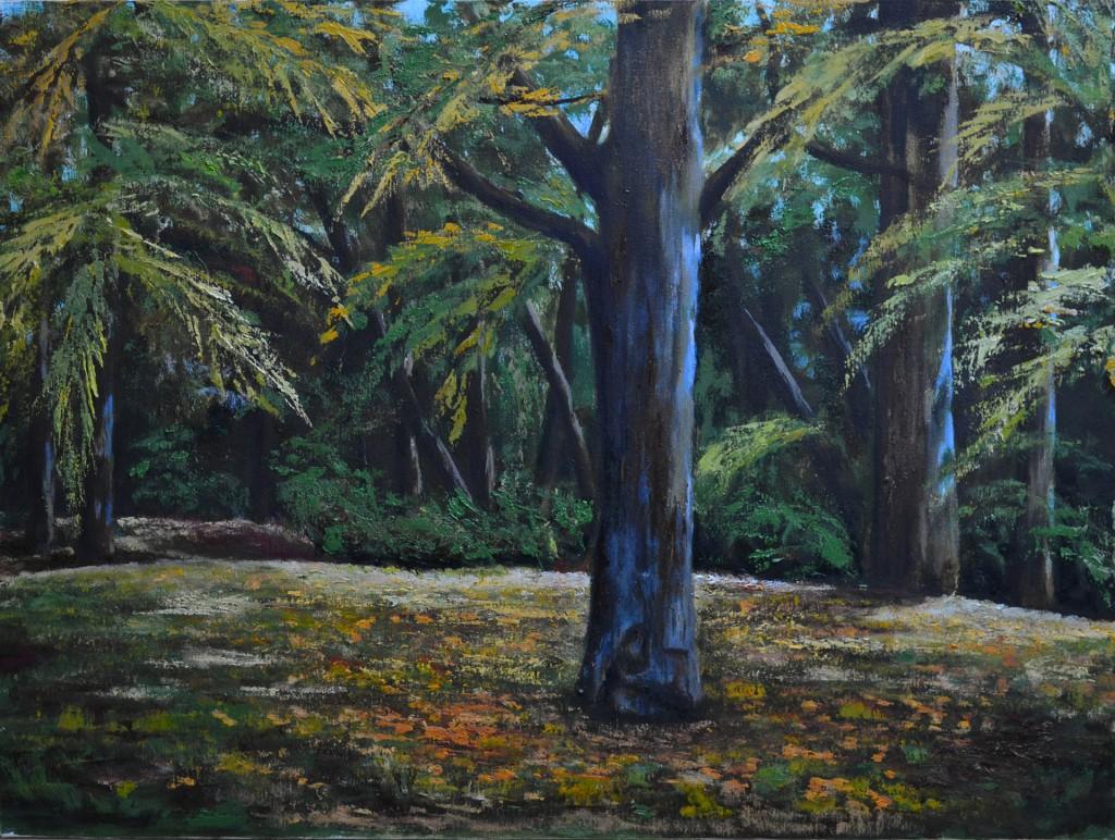 Paseo del Arga II. Pilar Aceña, óleo sobre lienzo.  50 x 40cm. Año 2013. PV 230 €