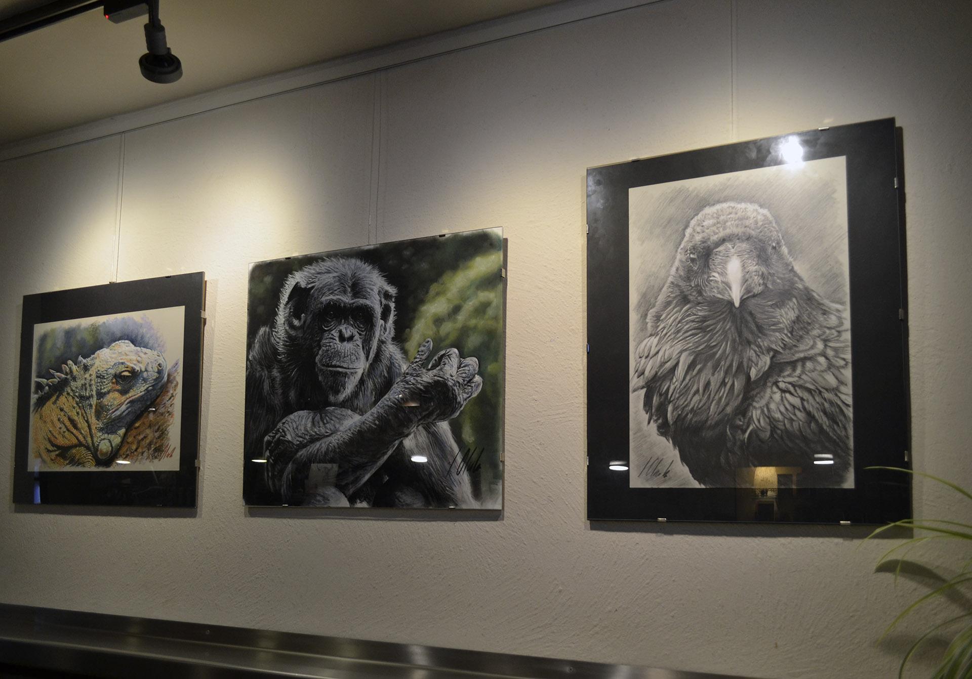 Exposición Javier Olmedo, Bar Gartxot mayo - junio de 2018. 06