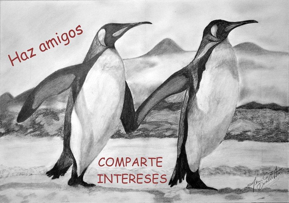 Dibujo en grafito de Daniello. Dos pingüinos.