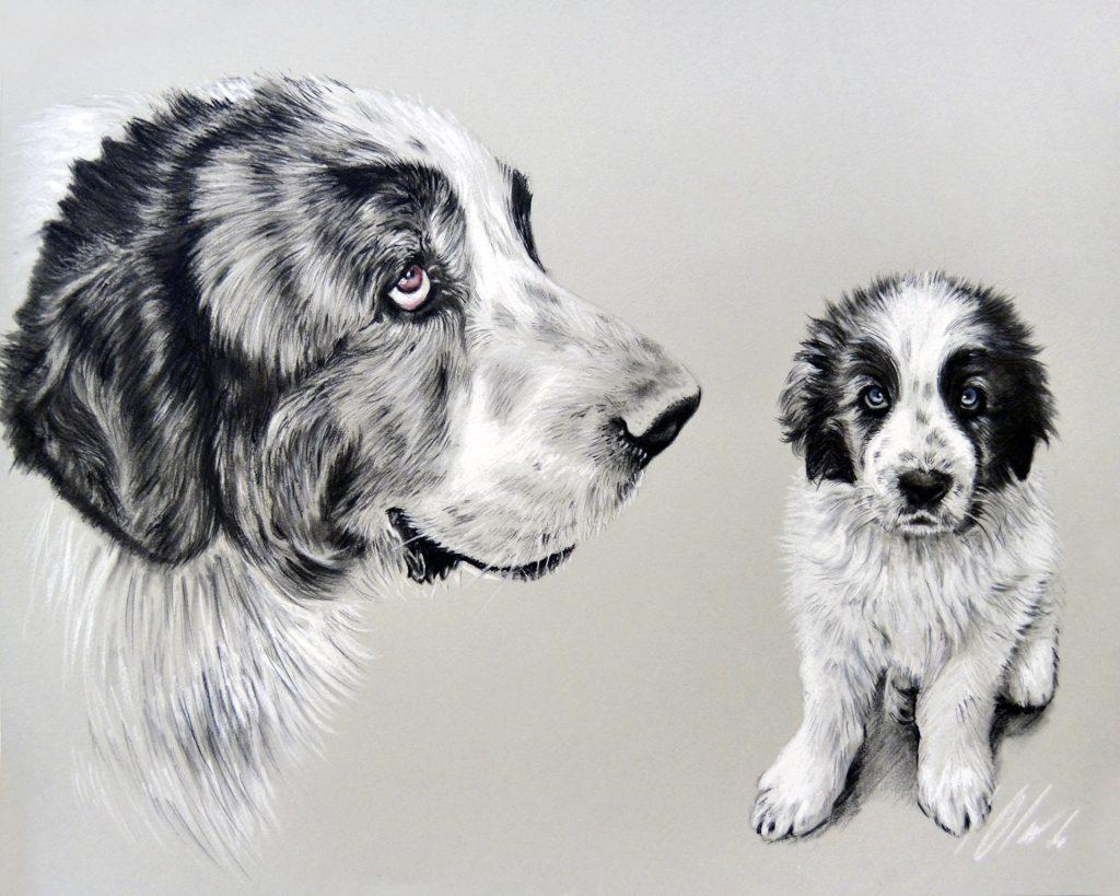 Manchas. Lápices carboncillo y lápiz blanco, 50 x 40 cm. Javier Olmedo - 2020